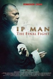 Ip Man 4: La Ultima Pelea